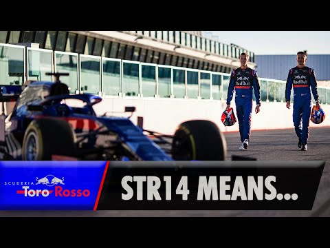 Image: Great white shark vs the Torpedo? Watch Toro Rosso get metaphorical