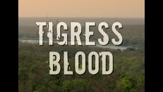Банда тигриц - Tigress Blood