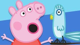 Peppa Pig Français   Amusement et jeux avec Polly Perroquet!   Dessin Animé Pour Enfant #PPFR2018