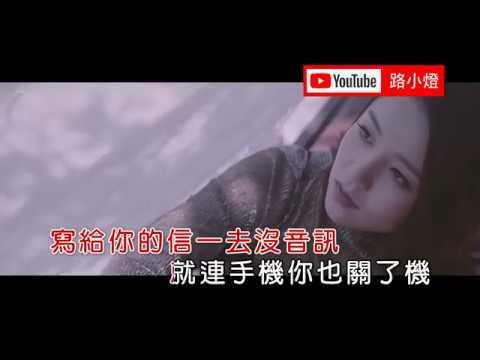 🌺孫露–下輩子也要找到你 (1080P) KTV