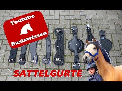 Lia & Alfi - [Pferde-Basiswissen] - Sattelgurte