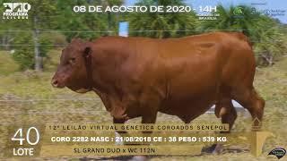 Coro 2282 b4 fiv