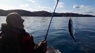 Рыбалка в баренцевом море форум