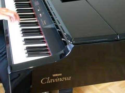 Gewichtete und anschlagsdynamische Tasten Clavinova