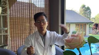 50. Chinese Medicine Study - General introduction of heat clearing formula20190525