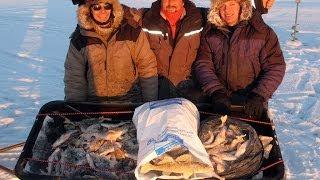 Рыбалка на рыбинском - форум