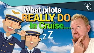 WHAT Pilots DO in Cruise?!