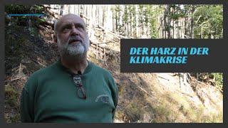 Der Harz in der Klimakrise
