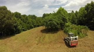 Clevinger Forest Services- Forestry Mulcher Land Clearing