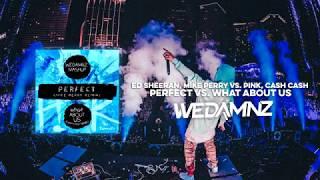 Ed Sheeran Vs. Pink, Cash Cash   Perfect Vs. What About Us (WeDamnz Mashup)