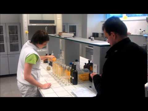 Cenný mléka houba, zda diabetes