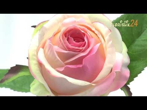 Floristik24 Rose künstlich Creme-Rosa Ø9cm L45cm