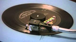 The Animals - Don't Bring Me Down - 45 RPM Original Mono Mix