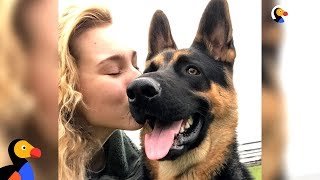 This Dog Has A Life-Saving Talent | The Dodo