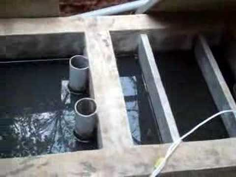 Bangalore-Treating kitchen waste water for reuse