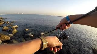 Рыбалка в рас эль хайме