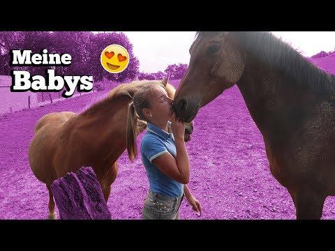 MEINE ABENDROUTINE 🙊😊 | Marina und die Ponys