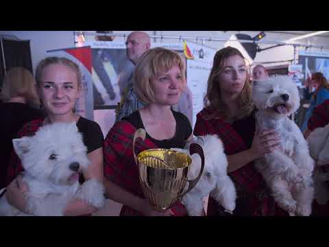 Euro Dog Show 2018 - Official Trailer / Officially Zwiastun
