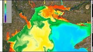 Из космоса показали «цветущее» Черное море. ВИДЕО