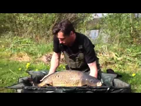 VALLEE LAKE 2 : Common Carp