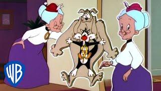 Looney Tunes   Dobule Grannies!   Classic Cartoon   WB Kids