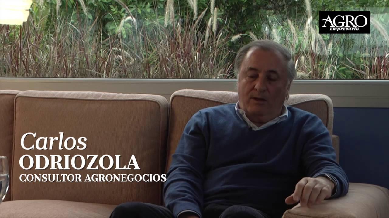 Carlos Odriozola - Consultor Agronegocios