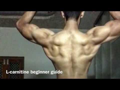 Le bodybuilding et le rein
