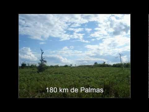 Fazenda em Abreulandia TO 1714 Alqueires Rio Grotão Walter Soares Imoveis.avi