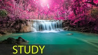 3 Hour Study Music for Concentration: Relaxing Music, Studying Music, Meditation Music, Focus ☯1674