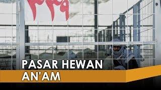 Berkunjung ke Pasar Hewan A'am, Tempat Jemaah Haji Bayar Denda