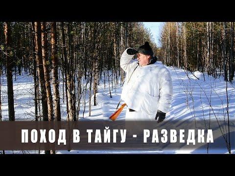 Поход в лес. Две ночи в тайге. Разведка. (тайга, болото, лыжи, снег)