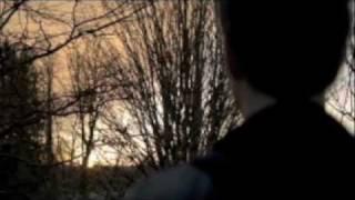 Back For The Taste Of Your Love - Stefan/Elena