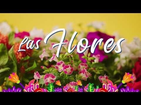 LAS FLORES ALZARÁN VUELO CC Santafé Medellín