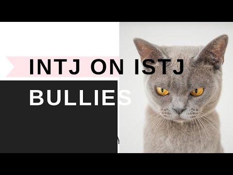 INTJ On ISTJ Bullies