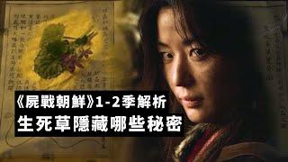 《屍戰朝鮮》全2季回顧解析,生死草隱藏哪些重大秘密!| 李屍朝鮮 王国