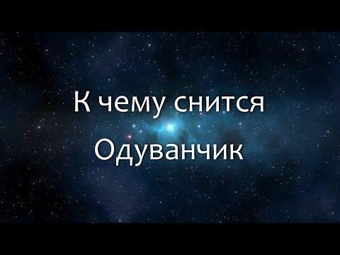 К чему снится Одуванчик (Сонник, Толкование снов)