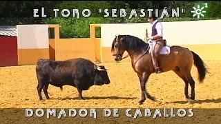Diego De Ventura Y El Toro Domador De Caballos | Toros Desde Andalucía