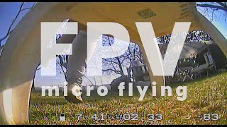 FPV flying in spring garden | drone Diatone r249+ HDR