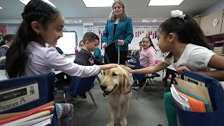 Kim Pruitt & Josie, School Counselor & Therapy Dog