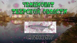 Рыбалка в вышнем волочке рыбхоз пуйга