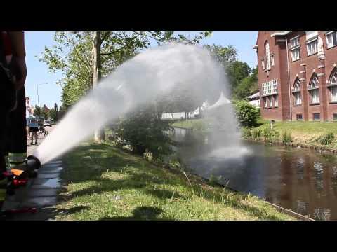 Vissen in nood De Raetsingel Boxmeer