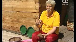 ГОЛОВА САДОВАЯ. Подкормка из хлеба для растений
