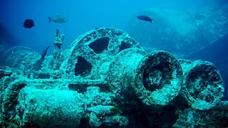 These Underwater Discoveries Will Give You NIGHTMARES!