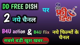 ddfreedish-in new channel comming soon 2019 - TH-Clip
