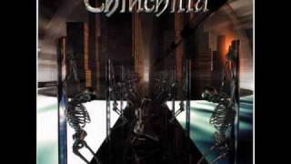 Chinchilla: Heavy Metal