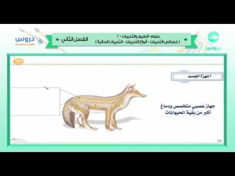 الاول المتوسط | الفصل الدراسي الثاني 1438 | علوم | الطيور والثدييات-2