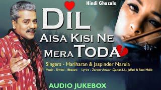 Dil Aisa Kisi Ne Mera Toda - Audio Jukebox | Hariharan