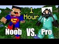 ONE HOUR of NOOB vs Pro Minecraft Ani