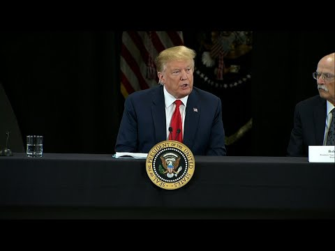 "U.S. President Donald Trump has described the fire engulfing Paris' iconic Notre Dame Cathedral, as ""a terrible sight to behold."" The president made his remarks at the beginning of an event about the economy and tax reform in Minneapolis. (April 15)"