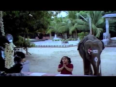 Saidhadamma Saidhadu Tamil Full Movie : Sivakumar, Sridevi